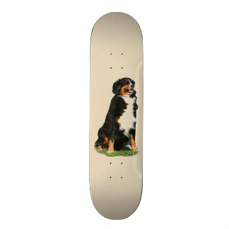 Skate Cão da montanha de Bermese