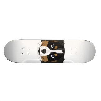 Skate Cão de montanha de Bernese da ilustração
