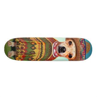 Skate Cão mexicano, chihuahua