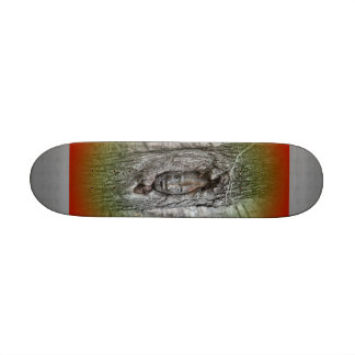 Skate com gnomo da floresta