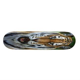 Skate com imagem da cara do tigre