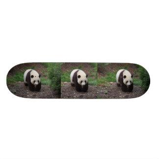Skate da foto da panda gigante