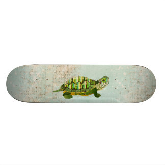 Skate da tartaruga do jade