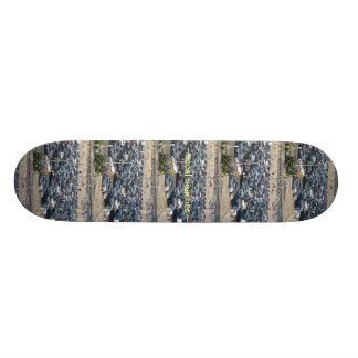 Skate de TNIT (praias de SoCal)