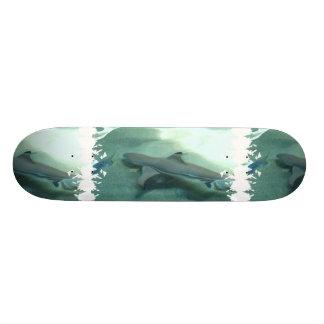 Skate derrubado preto do tubarão