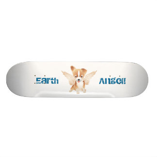 Skate do cão do anjo da terra