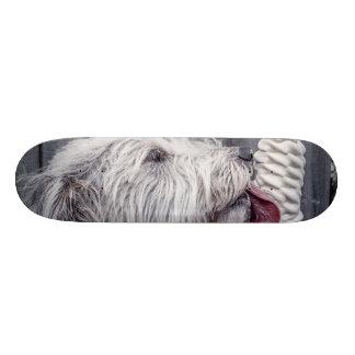 Skate do sorvete e do cão