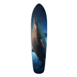 Skate do tubarão