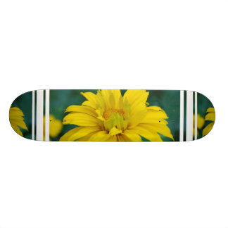 Skate falso lindo do girassol