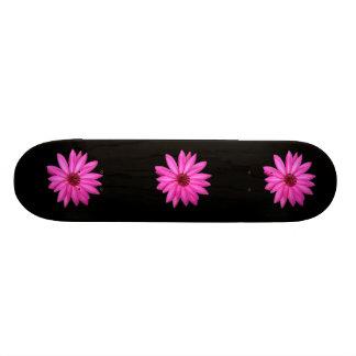 Skate feminino da menina roxa das mariquinhas do p