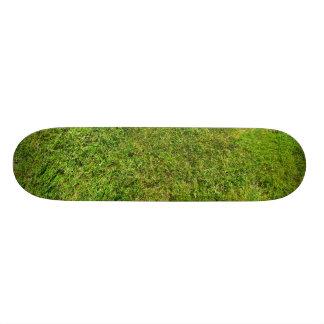 Skate Fundo da textura do teste padrão da grama verde do