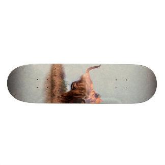 Skate Iaques selvagens - iaques nepal - arte da