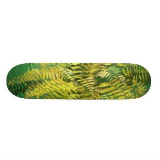 Skate Samambaia, frondas, hortaliças amarelas douradas