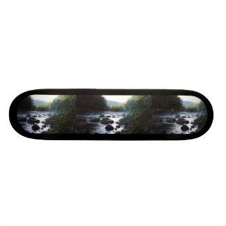 Skate telhado do modelo da foto