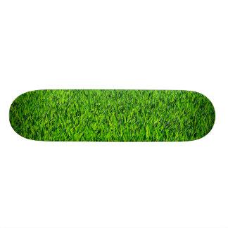 Skate Textura verde da grama do verão