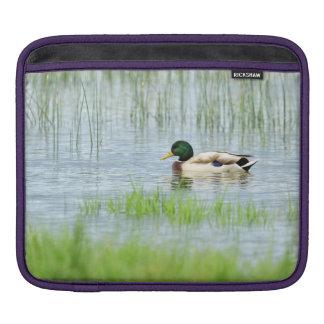 Sleeve Para iPad Pato masculino do pato selvagem que flutua na água
