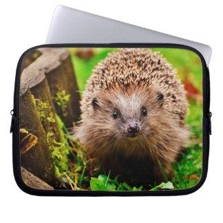Sleeve Para Laptop Ouriço pequeno bonito na floresta