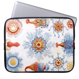 Sleeve Para Notebook Bluebottle das medusa de Ernst Haeckel