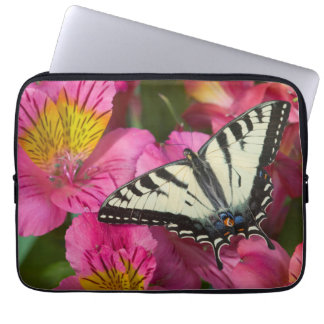 Sleeve Para Notebook Borboleta de Swallowtail no rosa