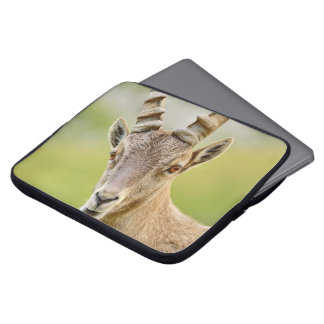 Sleeve Para Notebook Retrato de um íbex
