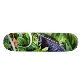 Slug preto na grama shape de skate 18,4cm