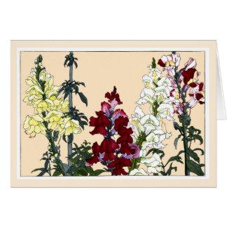 Snapdragons colorido, cartão botânico da arte