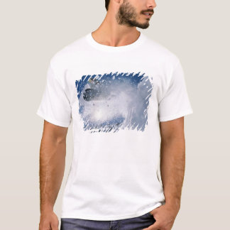 Snowboarding no recurso do Snowbird, Wasatch Camiseta