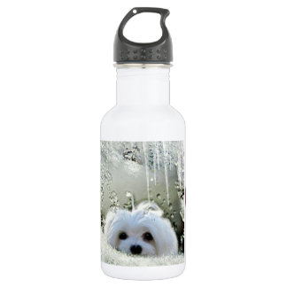 Snowdrop o maltês garrafa d'água