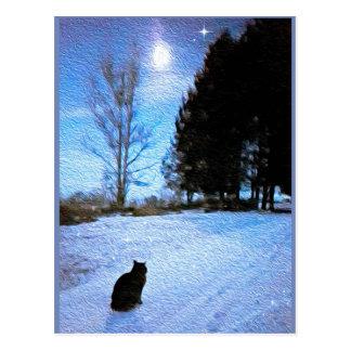 """""""Sob cartão de uma lua do gato malhado"""""""