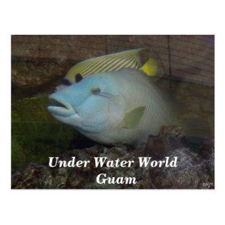 Sob o mundo Guam da água Cartão Postal