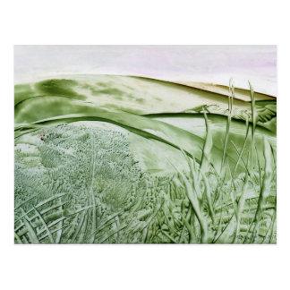 Sobre as colinas, cartão da arte do Encaustic