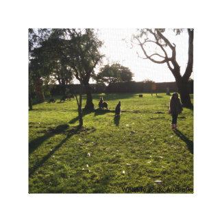 Sombra do canguru no parque selvagem da vida, impressão em tela