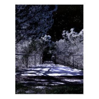 Sombras da lua cartão postal