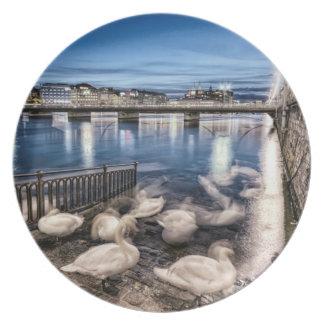 Sombras das cisnes no lago geneva, suiça pratos de festas