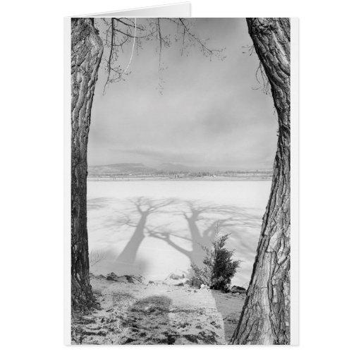 Sombras grandes de moldação preto e branco cartão