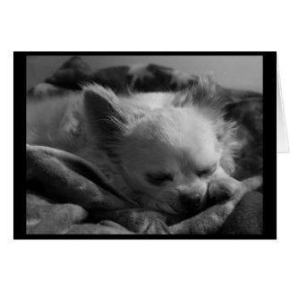 Sonhador minúsculo - cartão de nota vazio