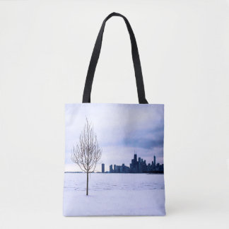 Sonho branco - inverno em Chicago, as bolsas