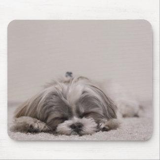 Sono Mousepad do tzu de Shih, cão do sono