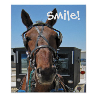 Sorriso de Amish Impressão