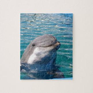 Sorriso do golfinho quebra-cabeças