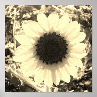 Sorriso nos girassóis - impressão da fotografia