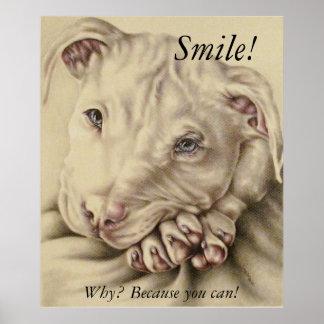 Sorriso, por que? Porque você pode! - Poster do