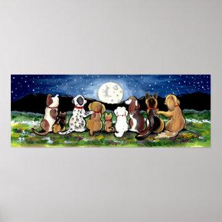 Spaniel de Dalmation do poster da cena da noite do