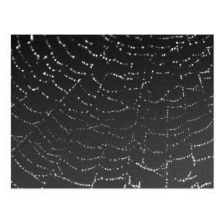 Spiderweb Sparkling Cartão Postal