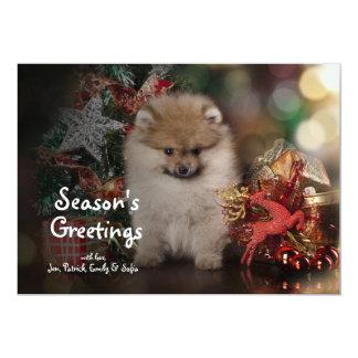 Spitz de Pomeranian, filhote de cachorro do Natal Convite 12.7 X 17.78cm