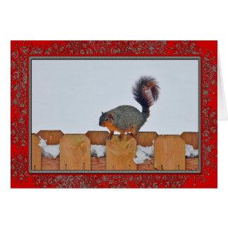 Squirrel em um cartão de Natal da cerca 6269