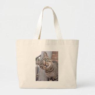 Sr Personalidade o gato de gato malhado Bolsas Para Compras