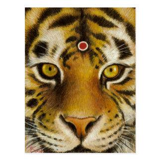 Sr. Tigre Cartão Postal