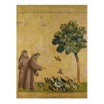 St Francis de Assisi que preaching aos pássaros Cartões Postais