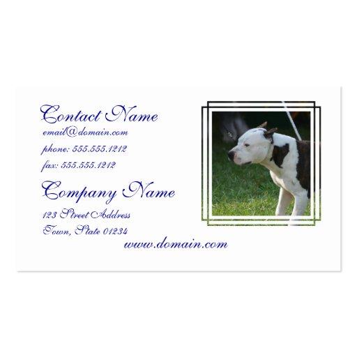 Staffordshire Terrier americano Modelos Cartão De Visita